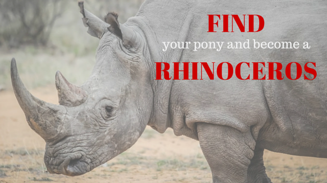 033 Find your pony and become a rhinoceros