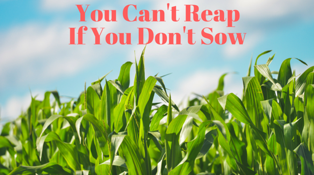 049 You Can't Reap If You Don't Sow
